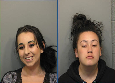 2 arrested in prostitution sting — Arlington Heights news ...