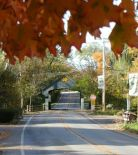 long grove in the fall