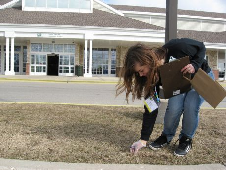 Anna Heinrich of Gurnee picks up tobacco litter outside of Hunt Club Park ...