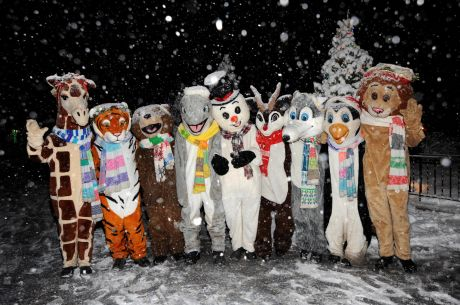 Come Celebrate The Holiday Season With Family And Friends During Brookfield  Zoou0027s 30th Annual Holiday Magic, Featuring Nearly One Million Twinkling  Lights ...