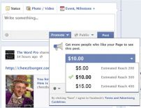 Facebook Promoted Posts: Reach More Friends