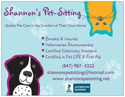 Dog Walking Services Chicago Suburbs