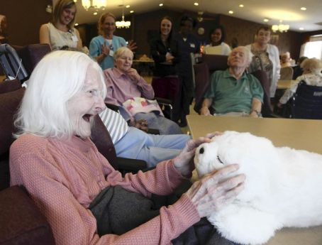 Dementia patients respond to interaction with robotic pet