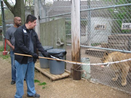 Veterans Upward Bound Lends A Hand To Rescued Animals At
